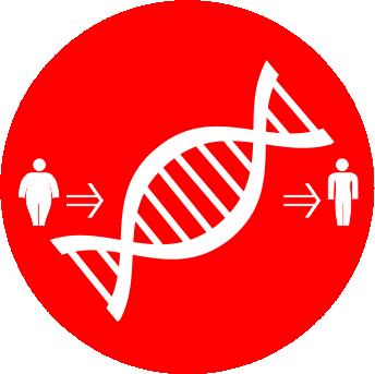 нутригенетика 8