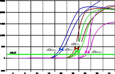 график6