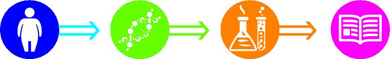 нутригенетика ооо биолинк реактивы